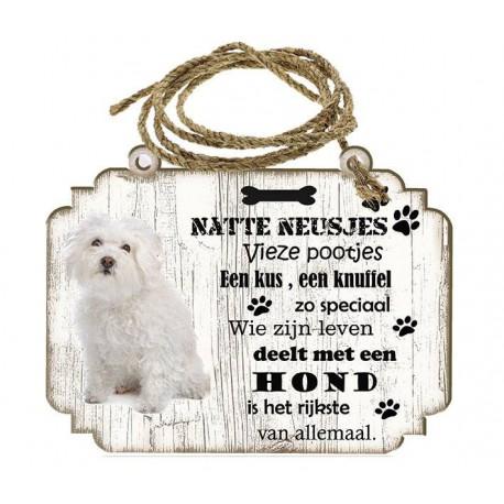 Hondenbordje: Bolognezer